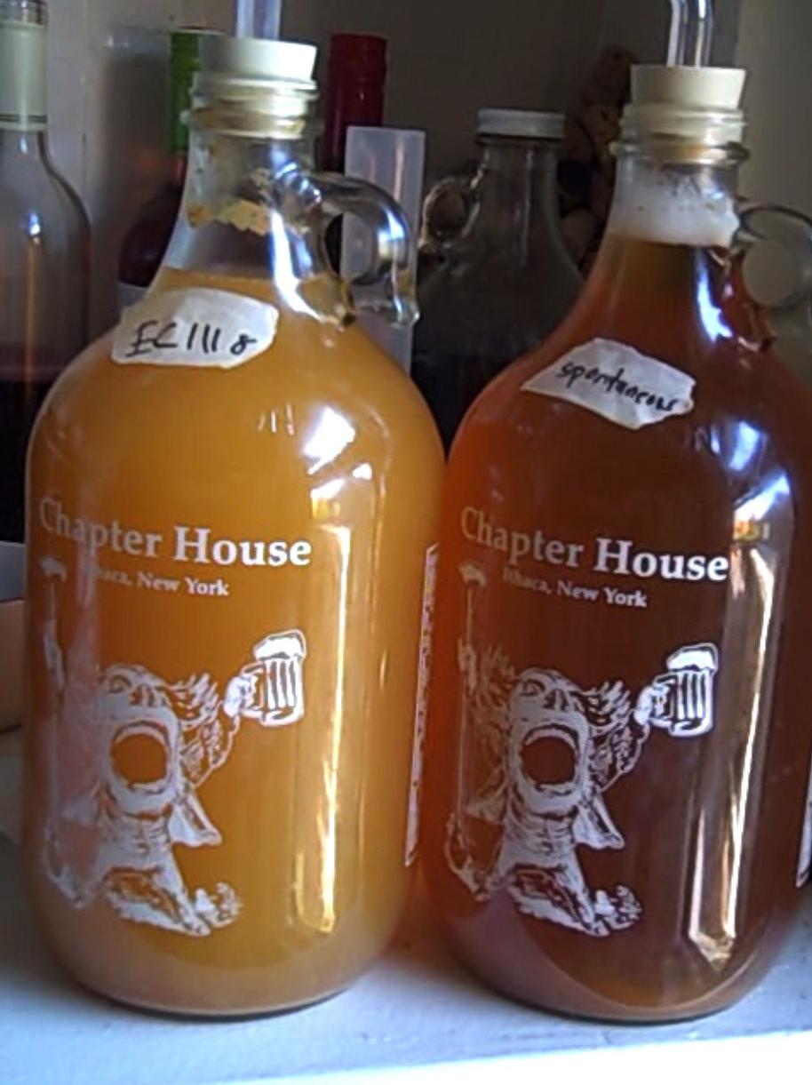EC-1118: fast fermentation (left) and spontaneous, slow fermentation (right)